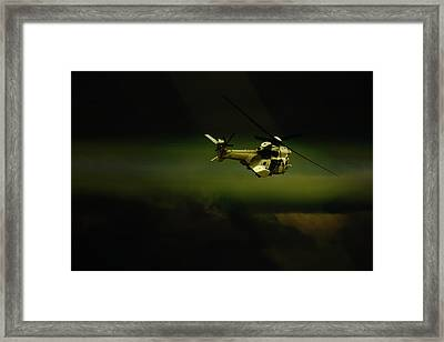 Framed Print featuring the photograph Oryx by Paul Job