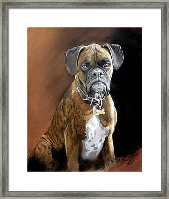 Oscar Framed Print by Artist Karen Barton