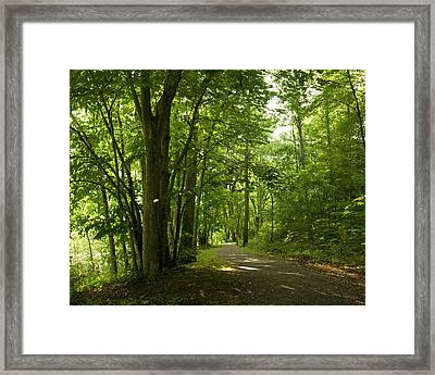 Framed Print featuring the photograph Osceola Island Bristol Tennessee  by Denise Beverly