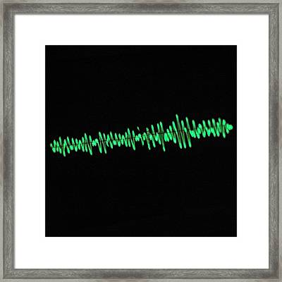 Oscilloscope Screen Framed Print by Science Photo Library
