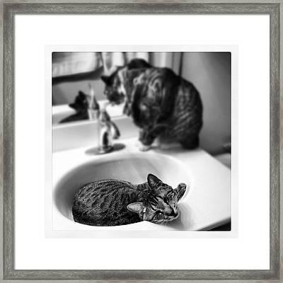 Oskar And Klaus At The Sink Framed Print by Mick Szydlowski