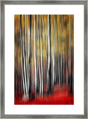 Framed Print featuring the photograph Osmosis by Philippe Sainte-Laudy