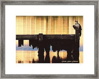 Osprey Framed Print by Cheryl Lynne  Leech-Johnson