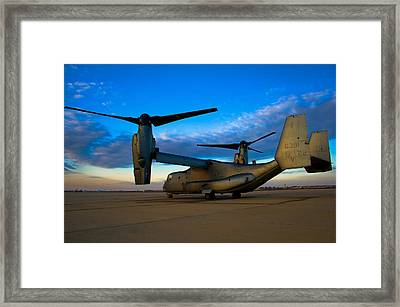 Osprey Sunrise Series 1 Of 4 Framed Print