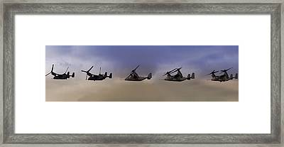 Osprey Transformation Framed Print