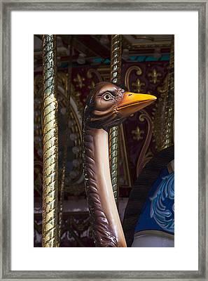 Ostrich Carrousel Ride Framed Print
