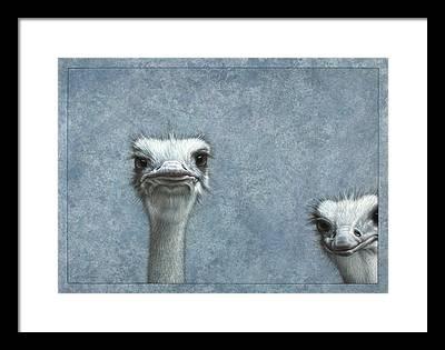 Emu Framed Prints
