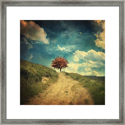 Other Stories Framed Print by Taylan Apukovska