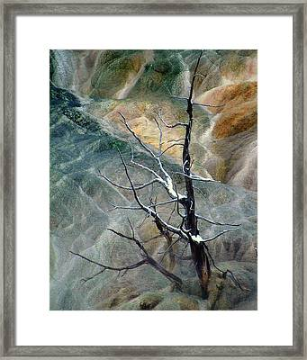 Other Worlds.. Framed Print by Al  Swasey