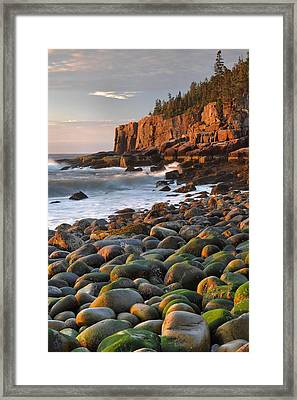 Otter Cliffs At Sunrise Framed Print by Stephen  Vecchiotti
