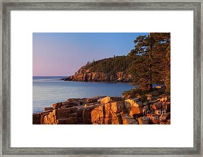 Otter Cliffs Maine Framed Print by Brian Jannsen