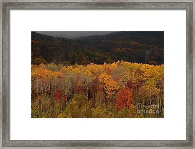 Otter Creek Road Framed Print by Paul Noble