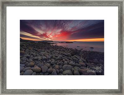 Otter Dawn Framed Print by Marco Crupi