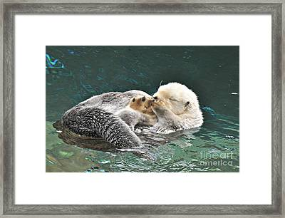 Framed Print featuring the photograph Otter Dreams by Mindy Bench