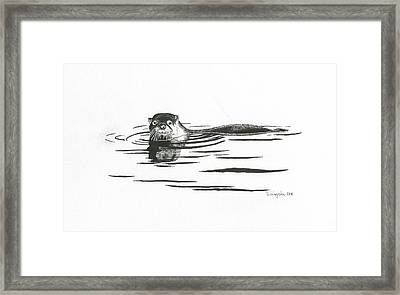 Otter In The Water Framed Print