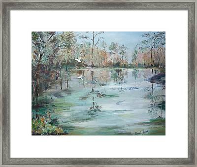 Otter Springs Framed Print by Dorothy Herron