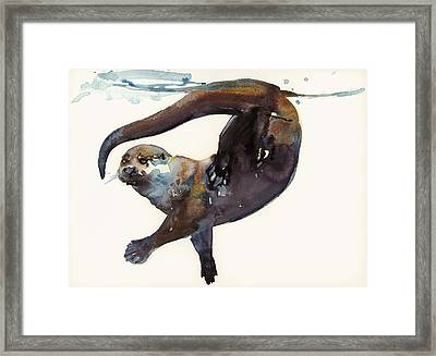 Otter Study II  Framed Print by Mark Adlington