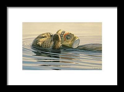 Otter Framed Prints