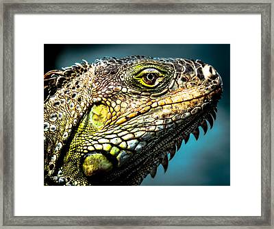 Our Creators Mosaic Art Framed Print by Karen Wiles