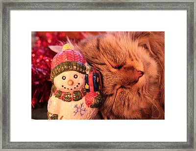 Our Favorite Ornament Framed Print by Christine Rivers
