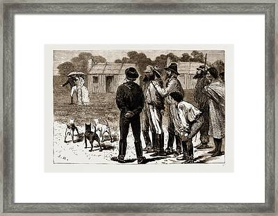 Our First Lady Visitors, New South Wales Framed Print by Litz Collection