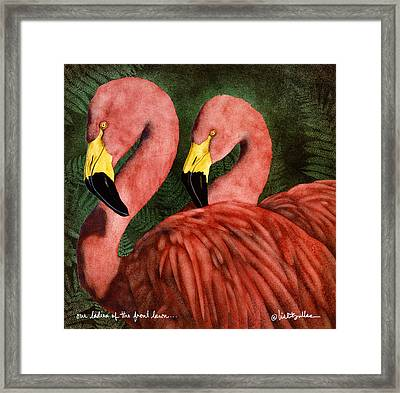 Our Ladies Of The Front Lawn... Framed Print