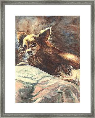 Chihuahua Angel Framed Print