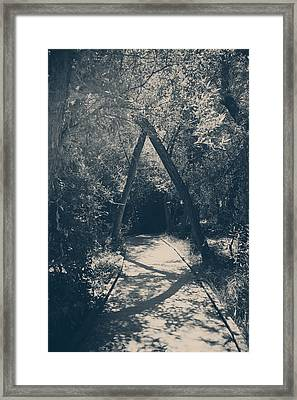 Our Paths Will Cross Again Framed Print by Laurie Search