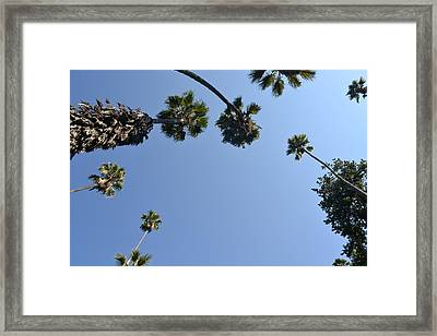 Our Point Of View Framed Print by Kiros Berhane
