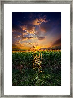 Our Time Together Framed Print by Phil Koch