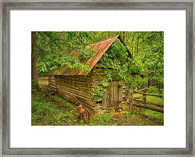 Out Back Framed Print by Priscilla Burgers