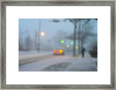 Out Cold Framed Print by Diana Angstadt