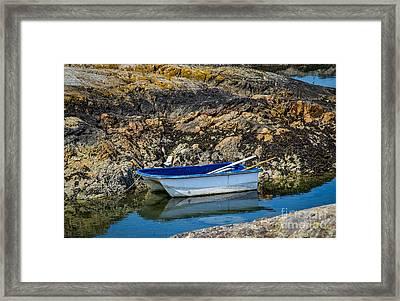 A Simple Pleasure Framed Print by Alanna DPhoto