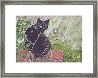 Out Hunting Framed Print