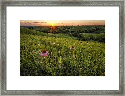 Out In The Flint Hills Framed Print