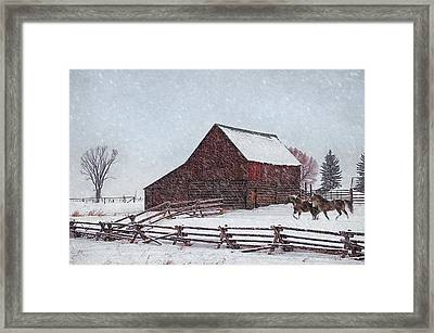 Out In The Snow Framed Print