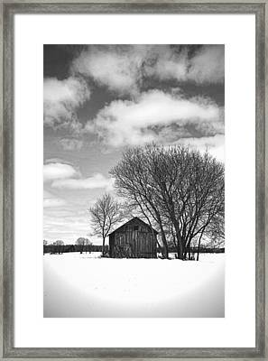 Out In The Sticks Framed Print by Thomas Young