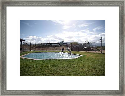 Out Of Africa  Tiger Splash 5 Framed Print