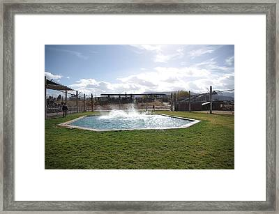 Out Of Africa Tiger Splash 9 Framed Print