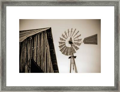 Out Of Focus Framed Print by Amber Kresge