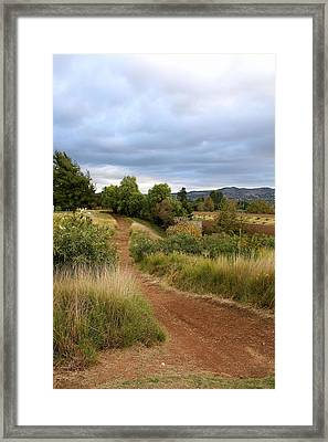 Out Of Freeway Framed Print by Viktor Savchenko