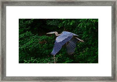 Out Of Nowhere Framed Print