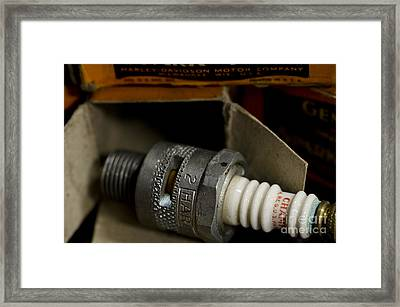 Out Of The Box Framed Print by Wilma  Birdwell