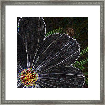 Out Of The Corner Of My Eye 2 Framed Print