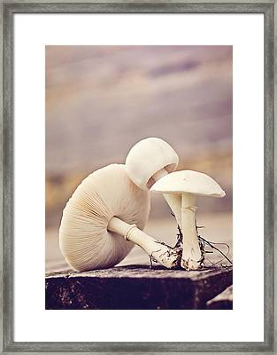Out Of The Ground Framed Print