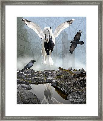 Out Of The Mist Framed Print by Judy Wood