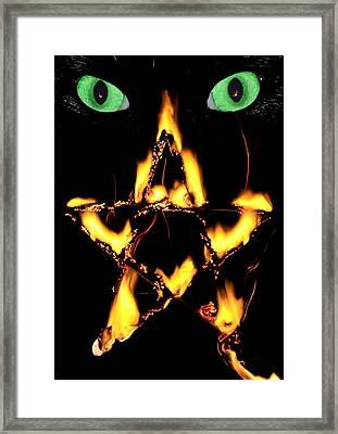Out Of The Night Framed Print