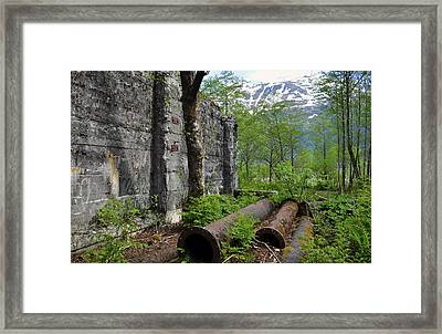 Framed Print featuring the photograph Out From The Past by Cathy Mahnke