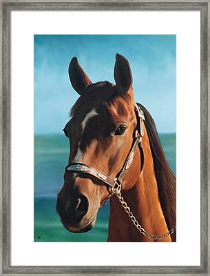 Out Of The Sea Comes The Arabian Framed Print by Barbara St Jean