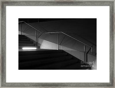 Out Of The Shadows Framed Print by Wendy Wilton